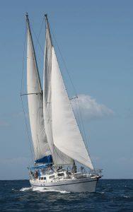 Calliope sailing